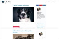 colliepoint.com